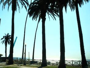 ホームステイに行ったロサンゼルス風景